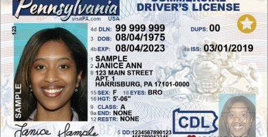 Licencia CDL