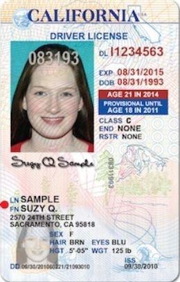 licencia provisional