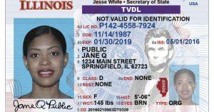 Cómo obtener una licencia temporal de manejo